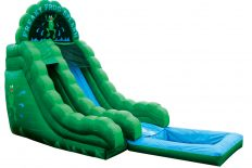 18' Freaky Frog - Pool