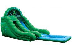 Freaky Frog - Pool