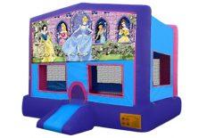 Purple Disney Princess