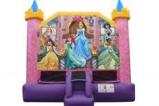Dazzle Disney Princess